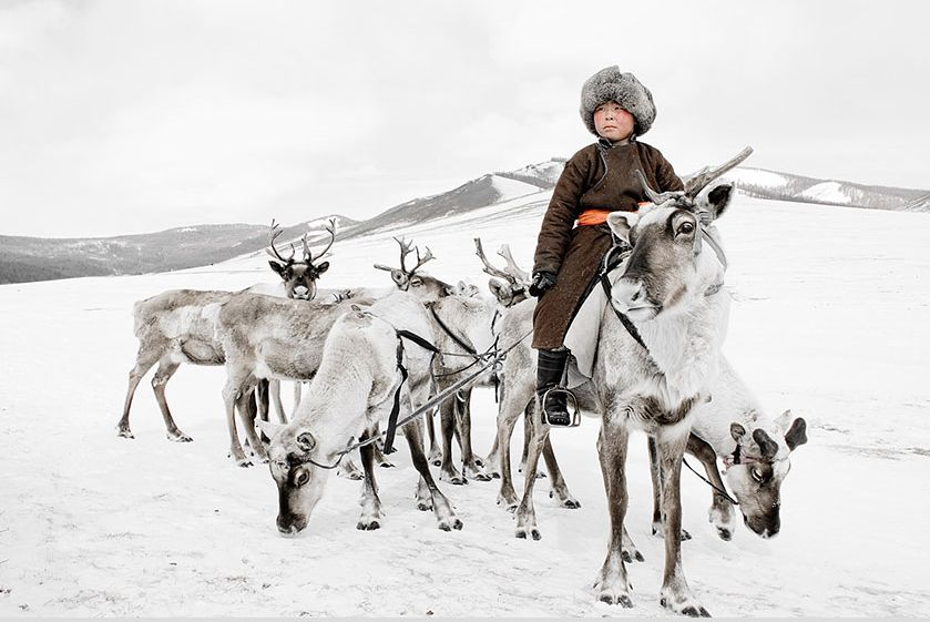 a boy riding deer in the snow