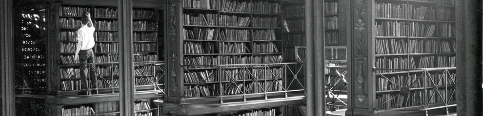 A man standing on a ledge in a library looking for a book