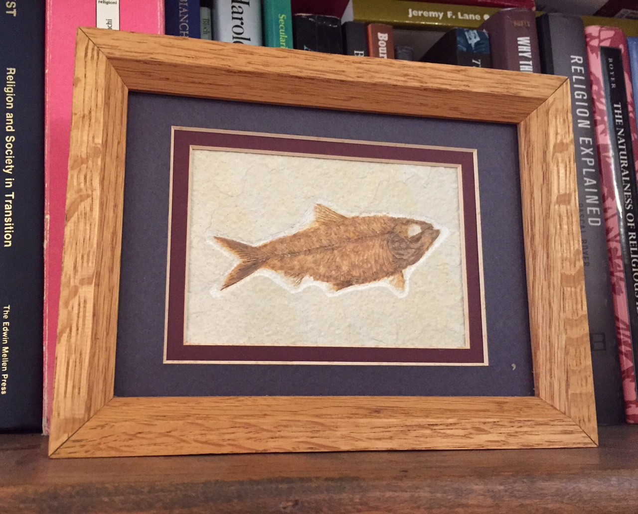 A framed picture of a fish