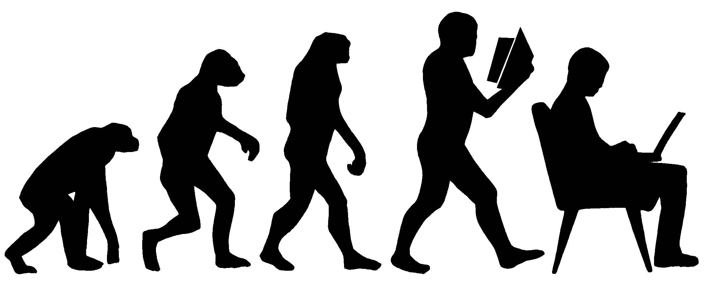 An image of the process of evolution